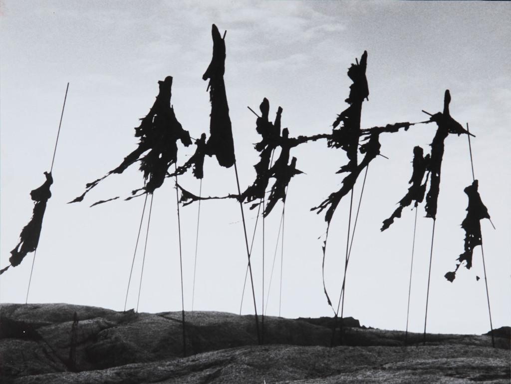 Inghild Karlsen, Fugleskremsler, 1983.Foto: Inghild Karlsen
