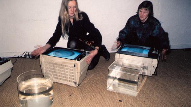 En utvikler og fremmer at den elektroniske kunsten, av nettkunst og kunstutdannelse. Kristin Bergaust er en av Norges tidlige videokunstnere. Hun har med sine kunstneriske arbeider og sitt utrettelige arbeid for og i det elektroniske feltet og på kunstskoler holdt aktiviteten oppe med alternative uttrykk og medier siden tidlig på åttitallet.